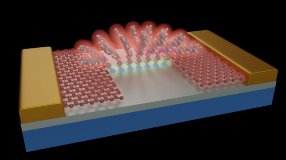 Schematische Darstellung von Molekülen, die auf einem SiO2/Si-Substrat verankert sind (grau). Dank der kontrollierten Struktur der Moleküle bildet sich eine stabile molekulare Architektur, die als Brücke für die zwischen den Graphen-Elektroden wandernden Elektronen dient. Diese Graphenleitungen werden dann von herkömmlichen metallischen Gold-Pads (Au; gelb) kontaktiert. Die so entstandene Molekularstruktur erinnert an die Architektur eines römischen Bogens.