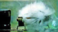Geräte-Integrierter Brandschutz: Feuermelder und Feuerlöscher in einem