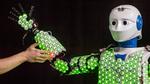 Forscher entwickeln Roboterhaut