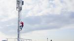 Vodafone, Telefónica Deutschland und Deutsche Telekom kooperieren