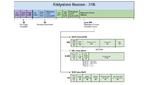 ON Semiconductor, RSL10, Bluetooth