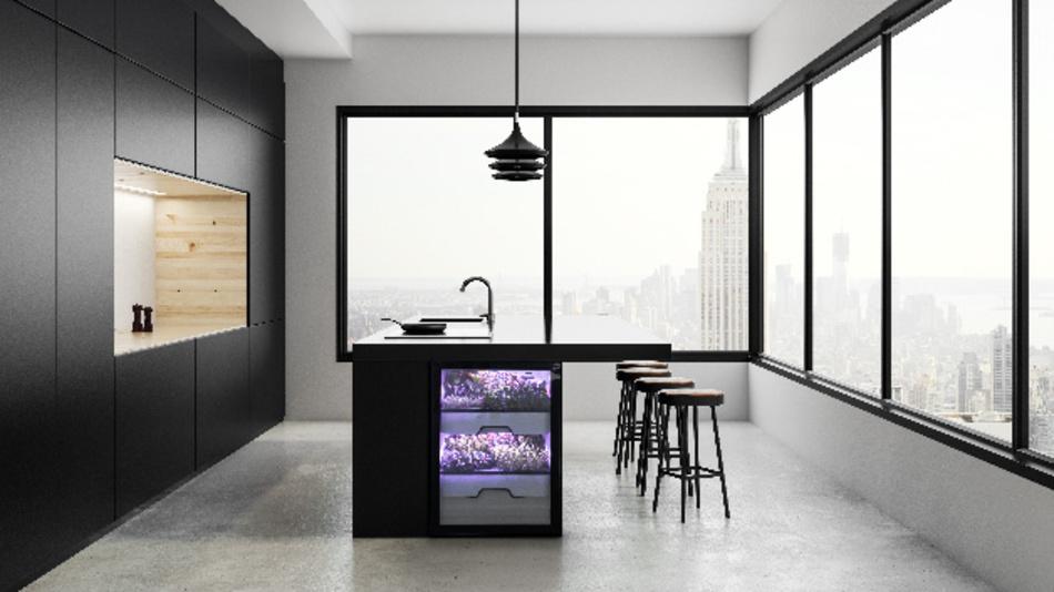 Die vollautomatischen Plantcubes von Agrilution lassen sich elegant in das Küchenumfeld integrieren. Miele ist von dem Konzept überzeugt und hat den insolventen Start-up gekauft.