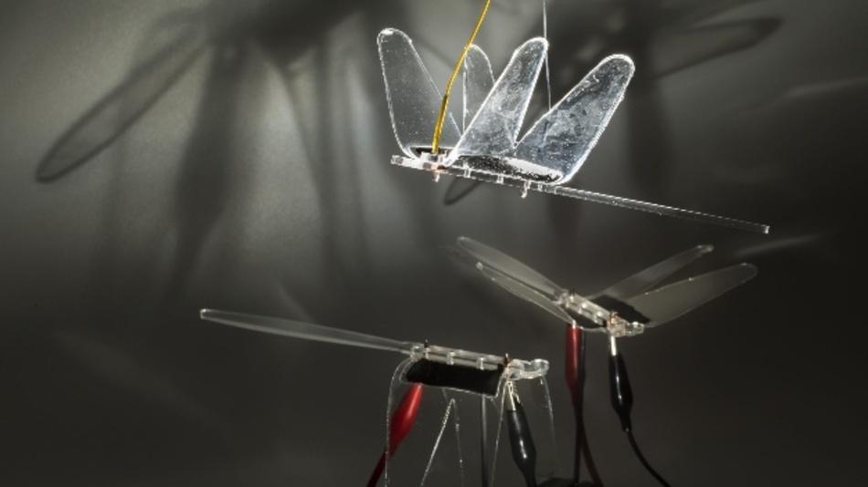 Schwarm bionischer Libellen.