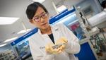 University of California San Diego, Lithium Metal Batteries, An Huang