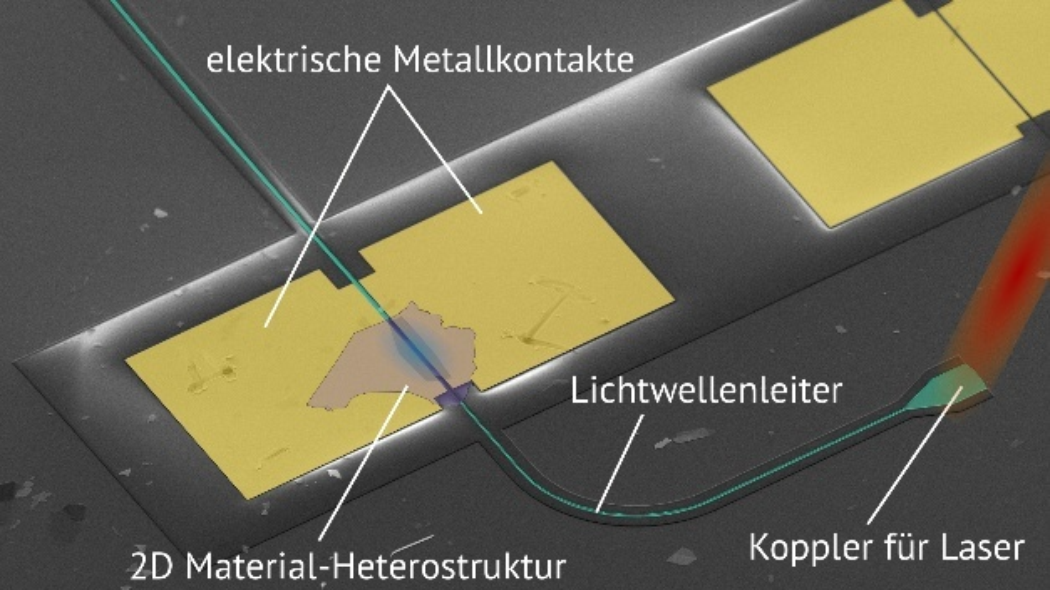 Der ETH-Lichtdetektor unter dem Elektronenmikroskop. Gut zu sehen sind die dünne Lage der zweidimensionalen Heterostruktur, der Lichtwellenleiter und die Metallkontakte, über die das Signal des Detektors ausgelesen wird.