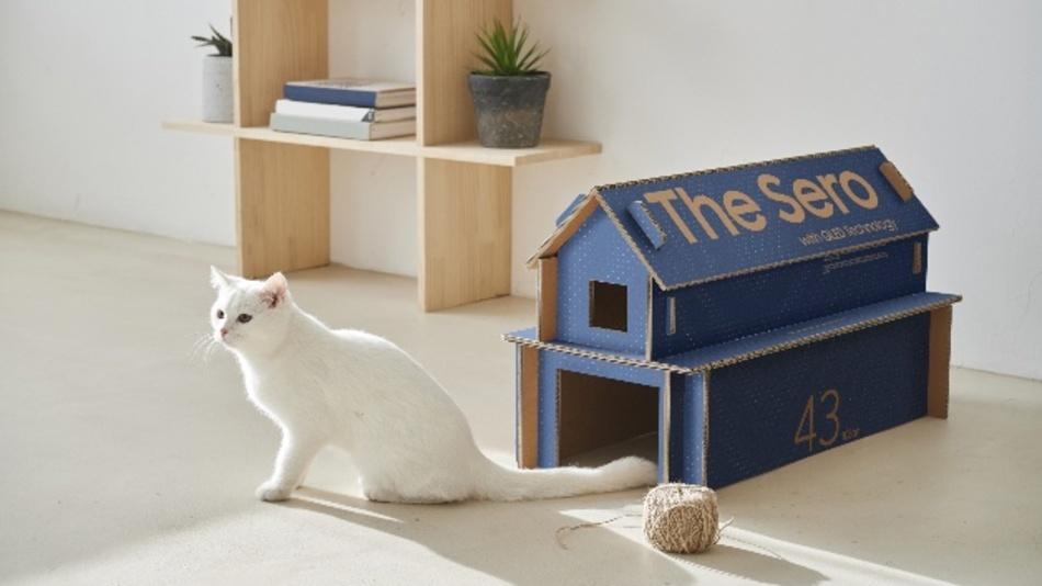 Die Frage, warum Katzen Kartons lieben, erreicht mit Samsung eine ganz neue Ebene…