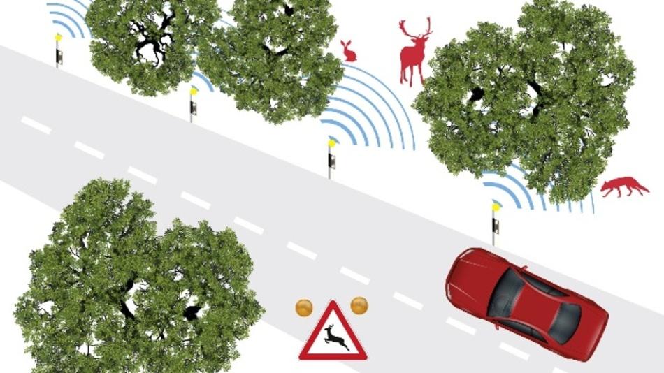 Per LoRaWAN kommunizieren die auf Pfählen am Straßenrand angebrachten Sensoren miteinander und ergeben gemeinsam ein großes Warnsystem