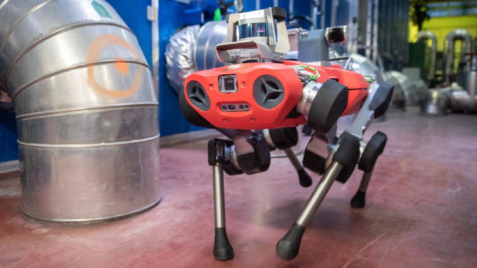 Der »ANYmal C« von ANYbotics navigiert autonom und sicher durch Industrieanlagen.