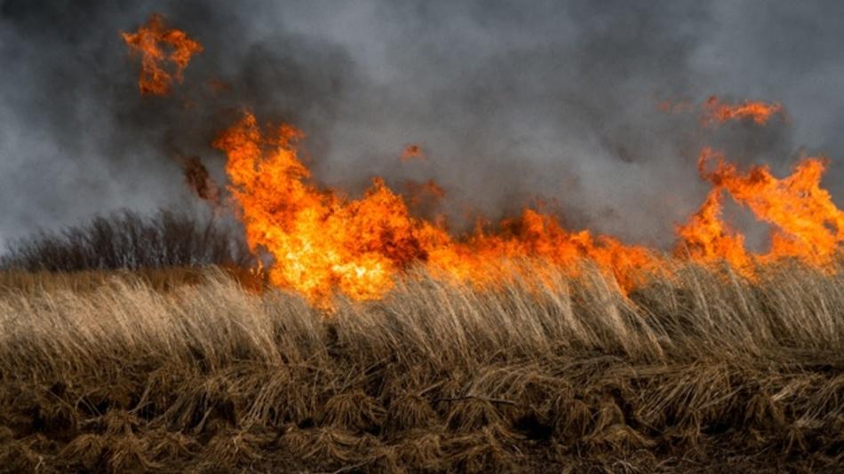 Australien will Buschbrände zukünftig mit Hightech und Drohnen bekämpfen.