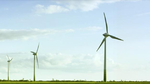Nationale Umsetzung der REDII bleibt hinter Klimazielen zurück
