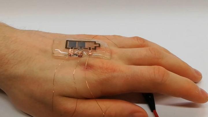 Ein biologisch abbaubares Display auf einer Hand.