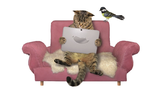 Smart Home Haustier-Gadgets