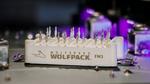 Cree stellt SiC-Modul-Plattform WolfPACK vor
