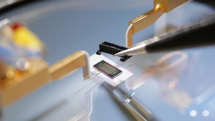 Sensor der FSU Jena mit 15 Graphen-FETs bei Voruntersuchungen am IMMS.