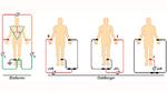 EKG-Ableitungen nach Einthoven und Goldberger