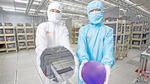 SK Siltron investiert massiv in SiC-Wafer