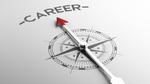 Vitesco rollt Career Map weltweit aus
