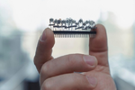 Sensoren erschnüffeln Minzdüfte ganz genau