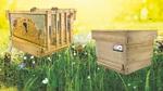 Sensor-Monitoring in Bienenstöcken für die bessere Analyse von Umweltchemikalien und anderen negativen Umwelteinflüssen.