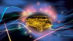 Energieverwaltung und Datenübertragung mit Zonen-Controllern