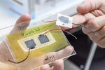 Empa Batterie bioabbaubar