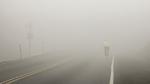 Nebel – und dennoch klare Sicht