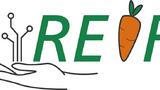 Das Logo der REIF-Plattform