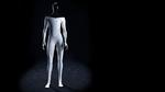 Humanoider Roboter Tesla